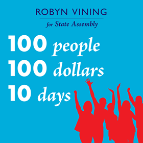 Robyn Vining for Wisconsin Assembly - 100 people. 100 dollars. 10 days.